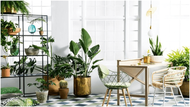 5 Easy Ways To Make Your Lovely Indoor Green Emporium
