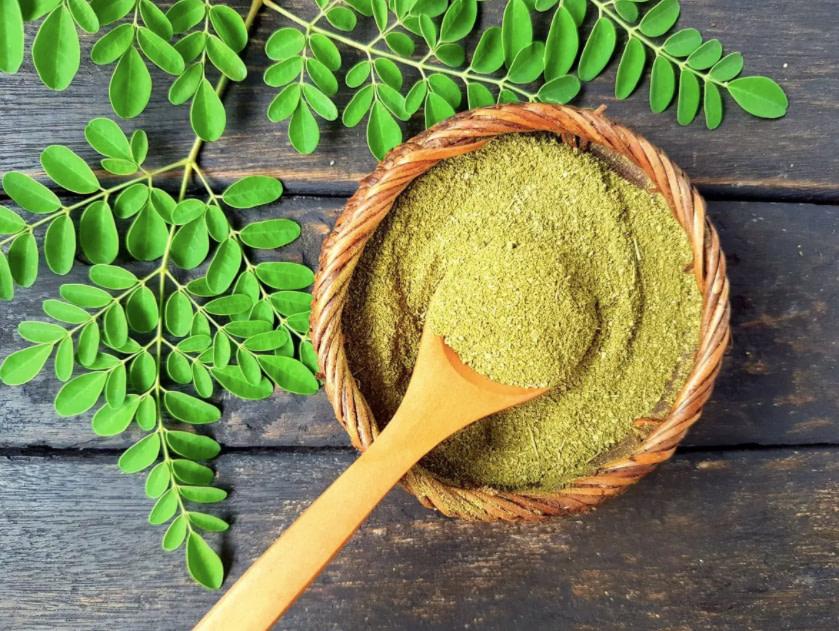 Is Moringa (Moringa Oliefera) Really A Miracle Plant?